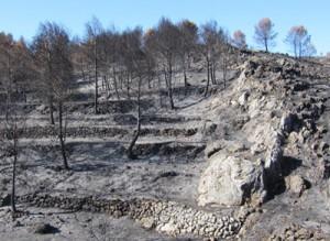 fuego en Vall d'Alcala