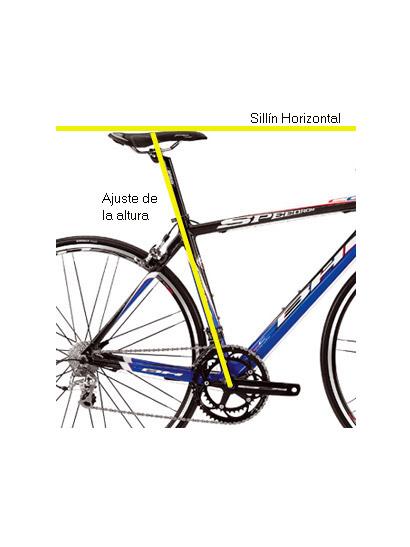 La talla ideal de tu bicicleta | BICIBLOG.COM