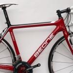 Bicicleta Red Ciclista 2010